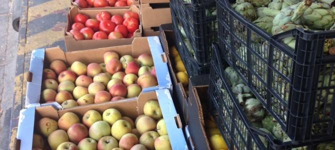 Recogida de fruta y hortalizas del Banco de Alimentos